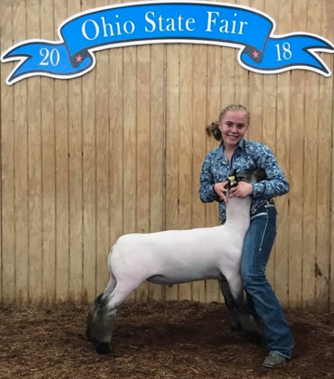 Class Winner Crossbreds - Ohio State Fair Shown by Margo Sturgis