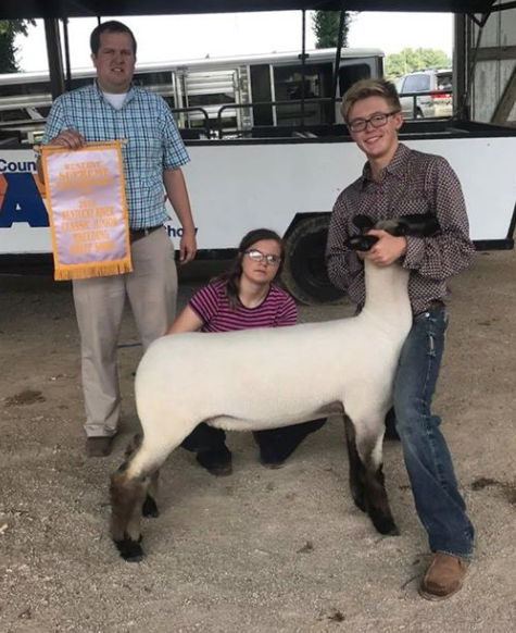 Res. Grand Champion Ewe - Kentucky River Classic Shown by Campbell Coyle