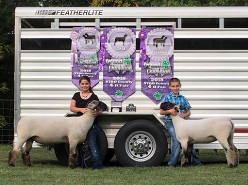 Grand Champion RamGrand Pair of Market LambsRes. Grand Pair of Lambs - Madison & Langdon Pounds Vigo Co. (IN)