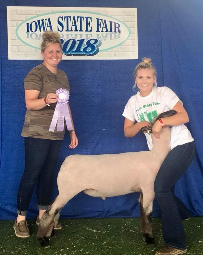 2nd in Junior & Open Mkt. Shows - Iowa State Fair 4-H Shown by Maegan Schorpp