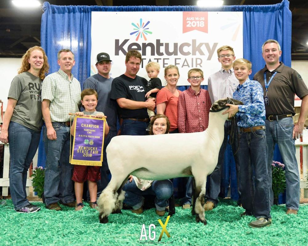 Champion Hamp Ewe - Kentucky State FairShown by Corbin Coyle