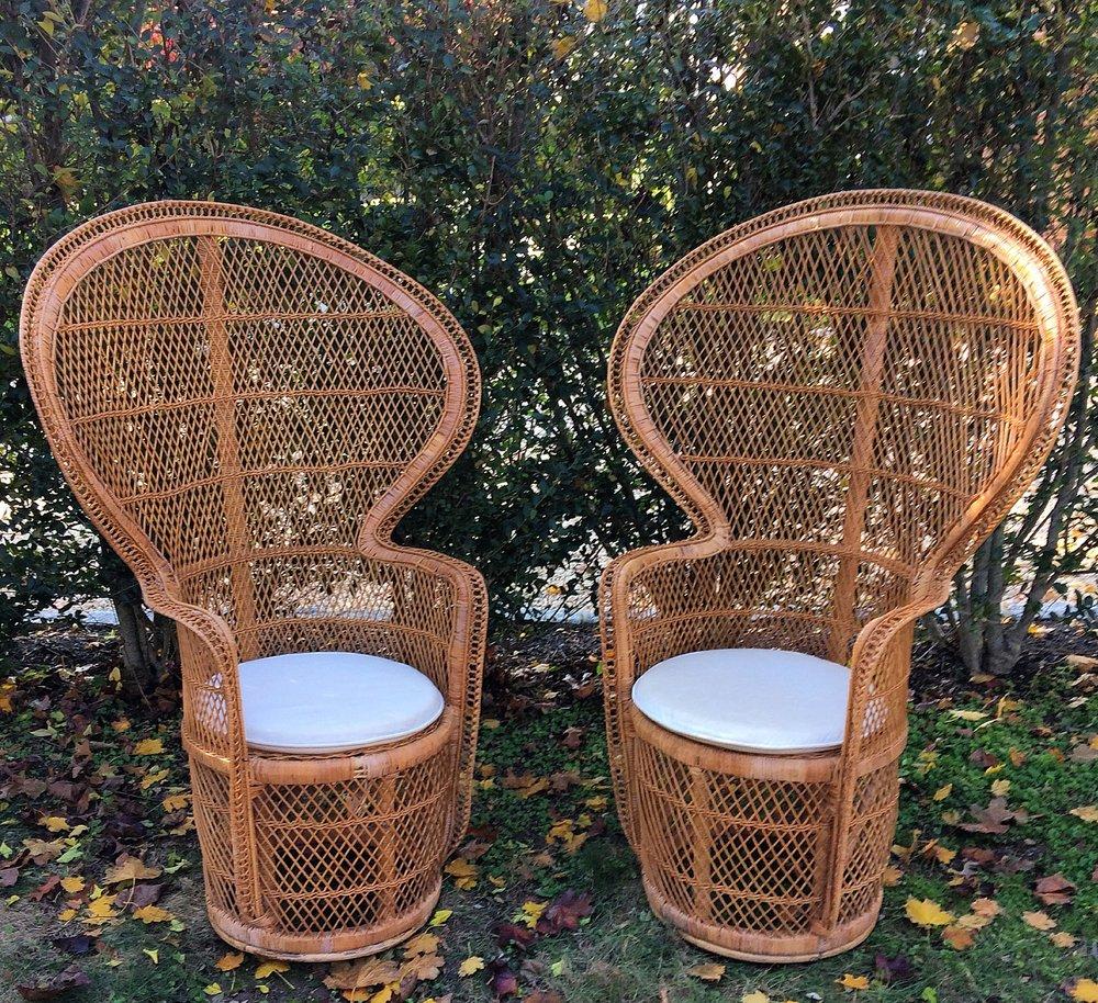 Talitha Peacock Chairs