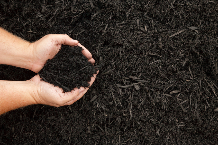 Black Mulch Hands