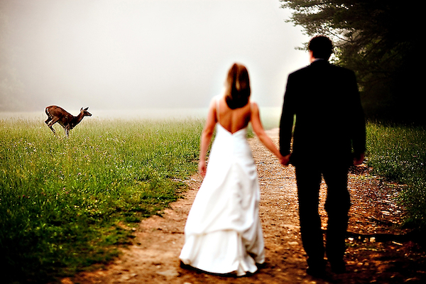 Genius-photo-bride-groom-holding-hands-deer-leaping-in-front-wedding-photo-north-carolina-photographer-tracy-turpen