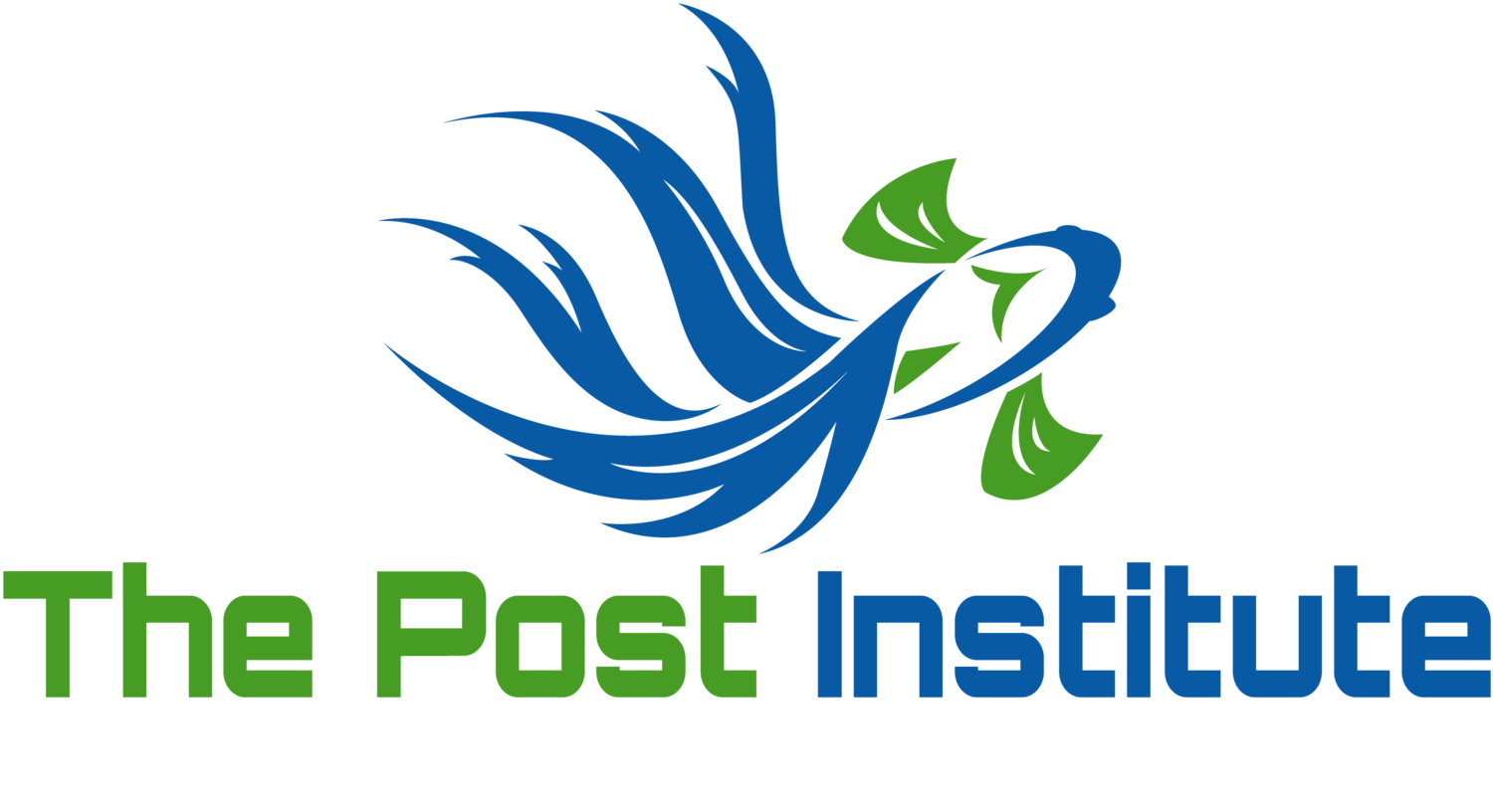 The Post Institute