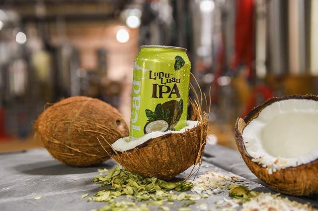 Juicy, coconut-y and oh-so tasty, @dogfishhead Lupu-Luau is a lupulin-loaded, tropical party in a can! 🥥 #craftbeer #offcentered
