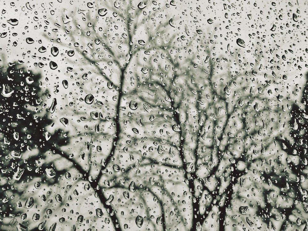 rain-2907366_1920.jpg