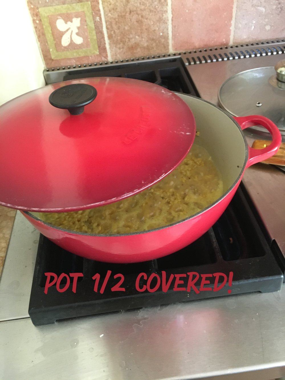 Pot 1/2 Covered