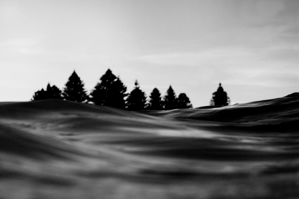 surf_9.jpg