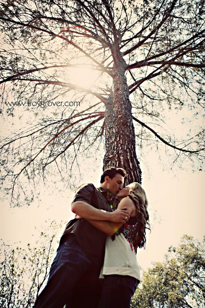 tree_engagement_picture