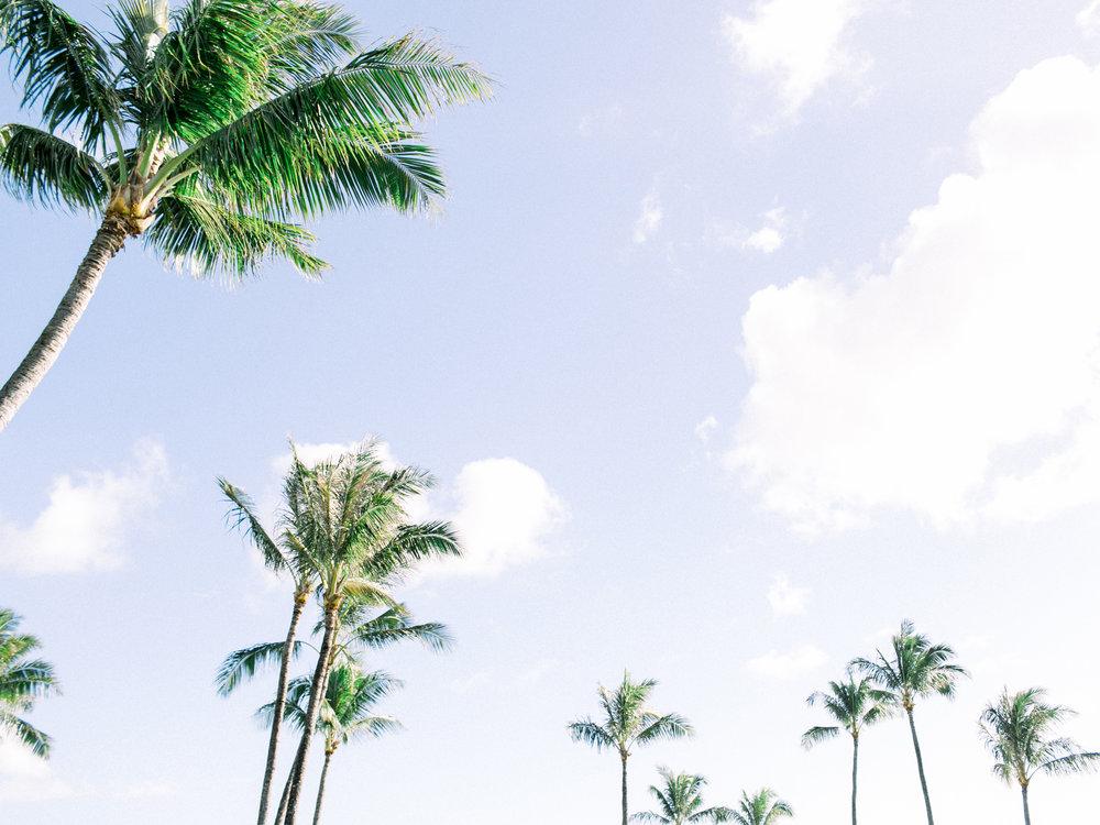 Maui-Fine-Art-Wedding-Photographer-02.JPG