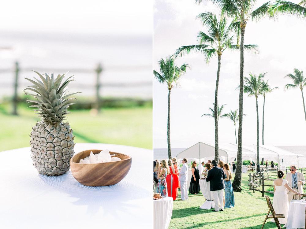 Maui-Fine-Art-Wedding-Photographer-18.JPG