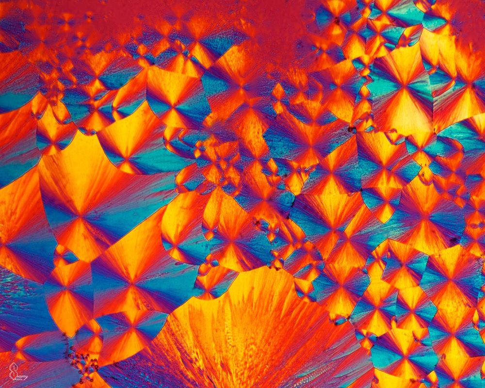 Citric acid, Santa Barbara, California, under the microscope.  More info.