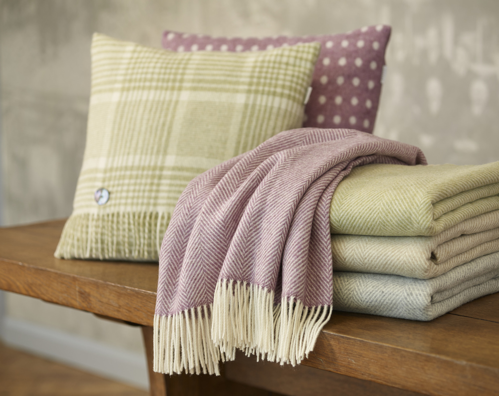 Beautiful Bronte by Abraham Moon & Sons Throws and Cushions