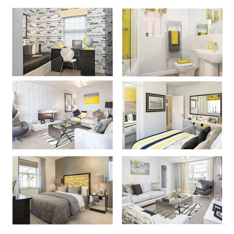 Images courtesy of David Wilson Homes, with permission