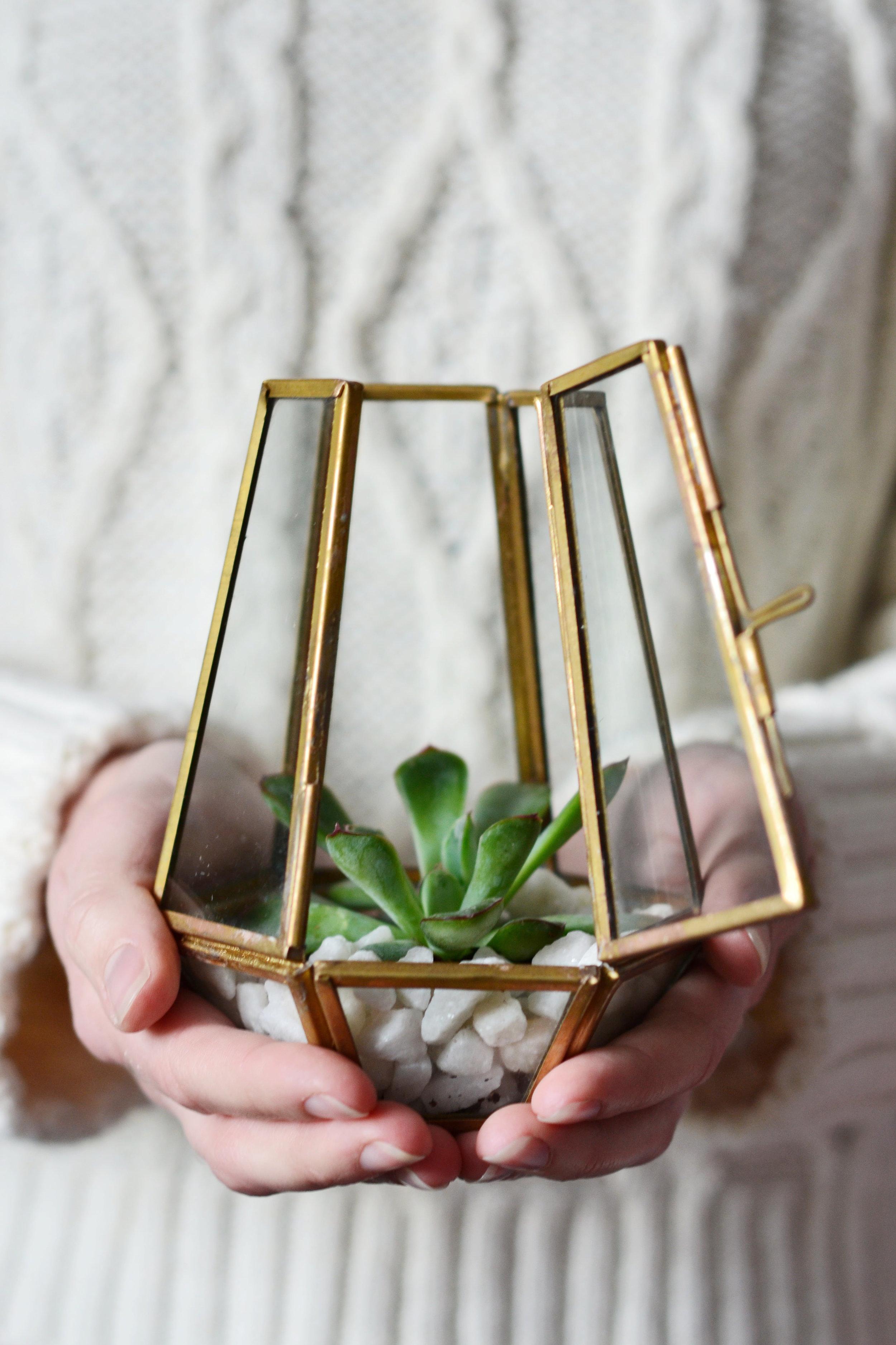 Brass Terrarium via  Decorator's Notebook