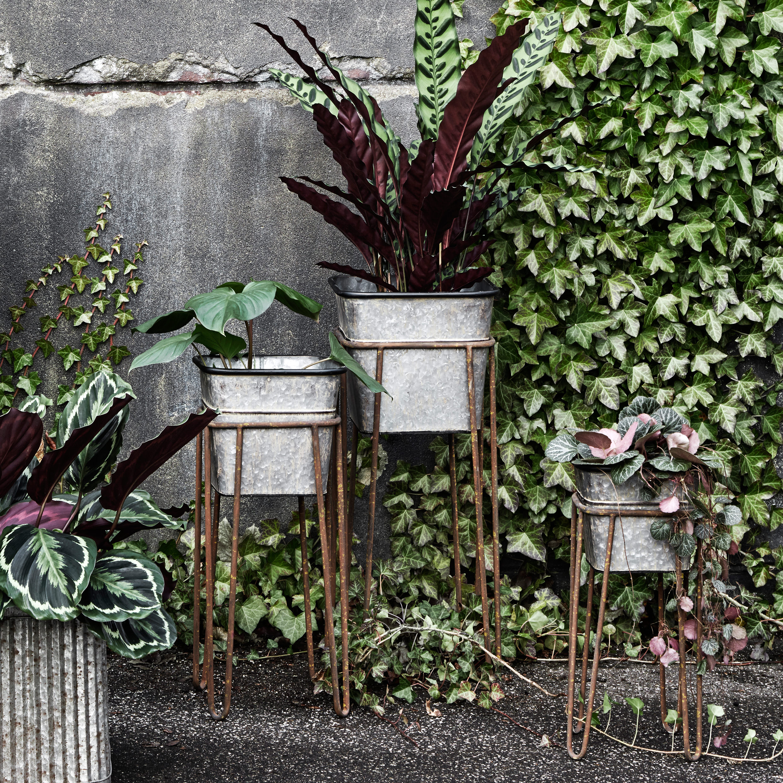 Zinc effect planters by  MiaFleur