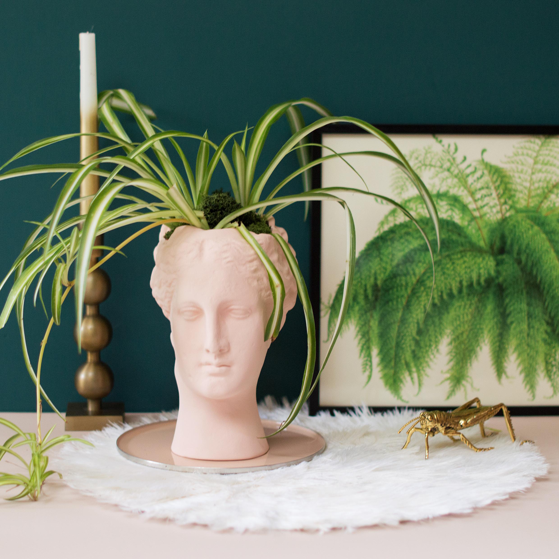 Blush Hygeia vase from  MiaFleur