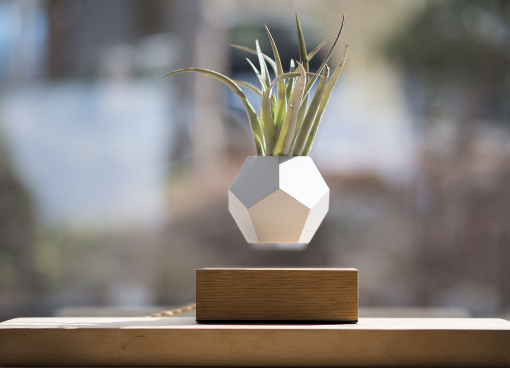 Lyfe Levitating Planter, Noxu Home