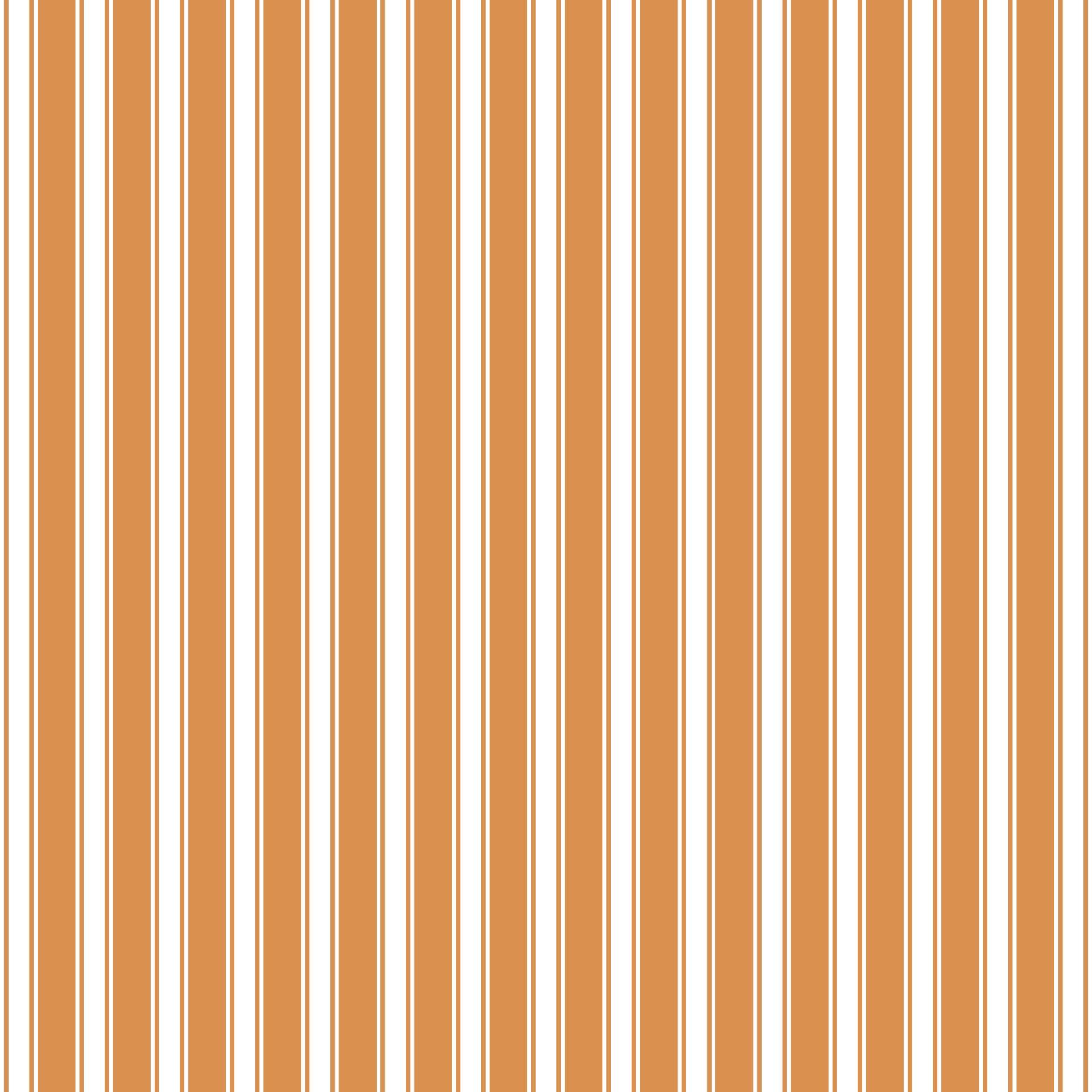 Stripes- Regency