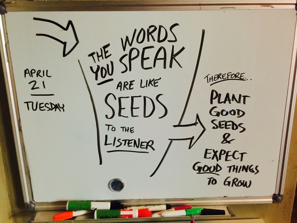 The Words You Speak
