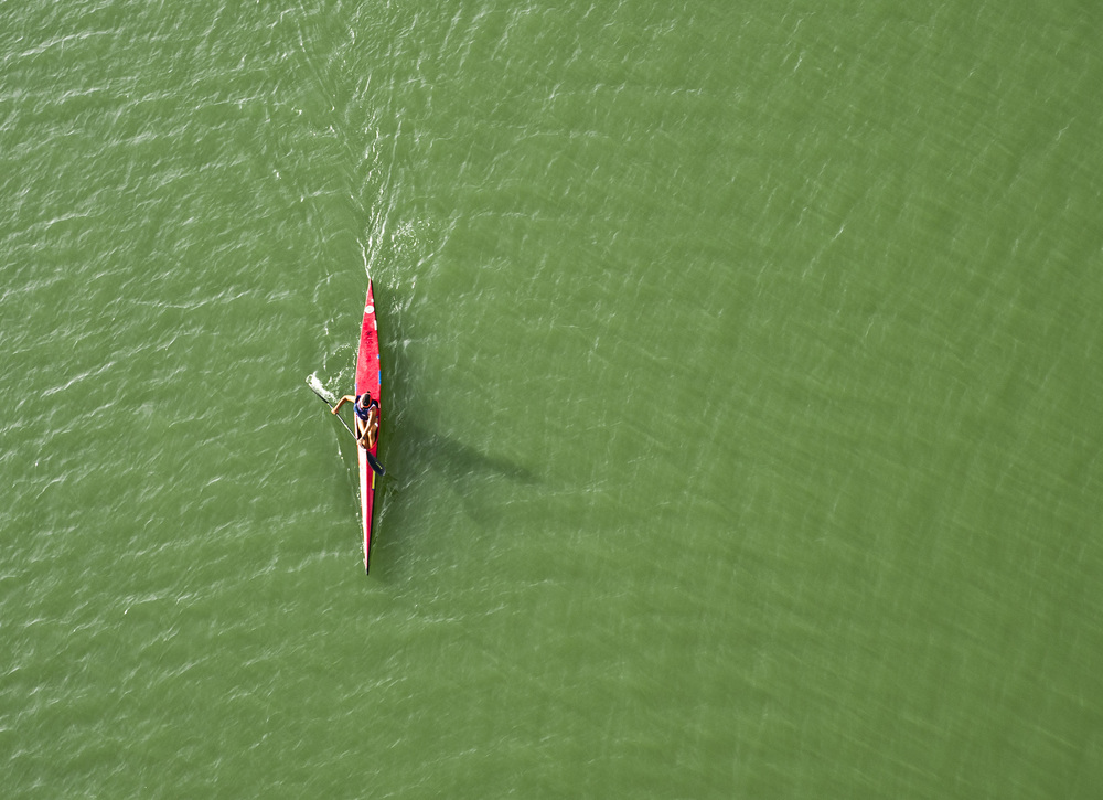 A kayak slices through the algae bloom at the Marina Channel.