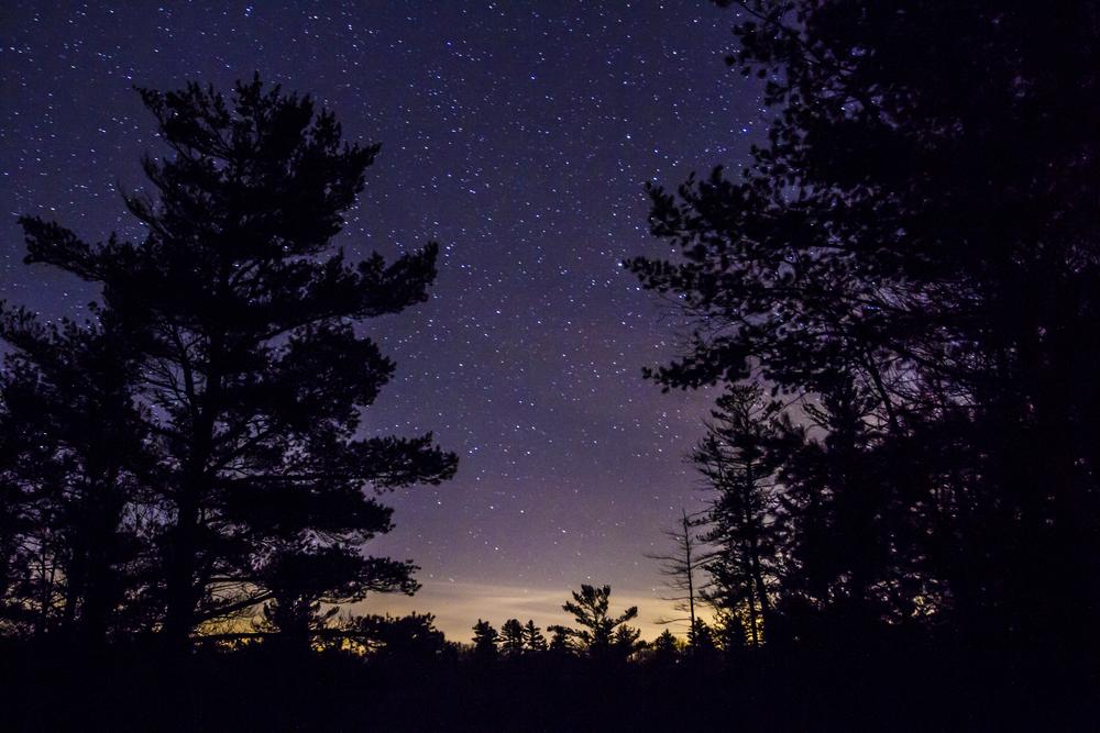 Purple Sky Stars.jpg