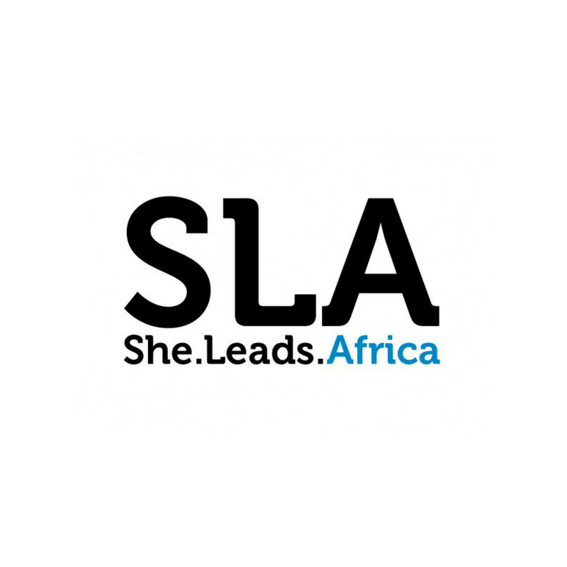Speaker at She Leads Africa - She Hive Bootcamp