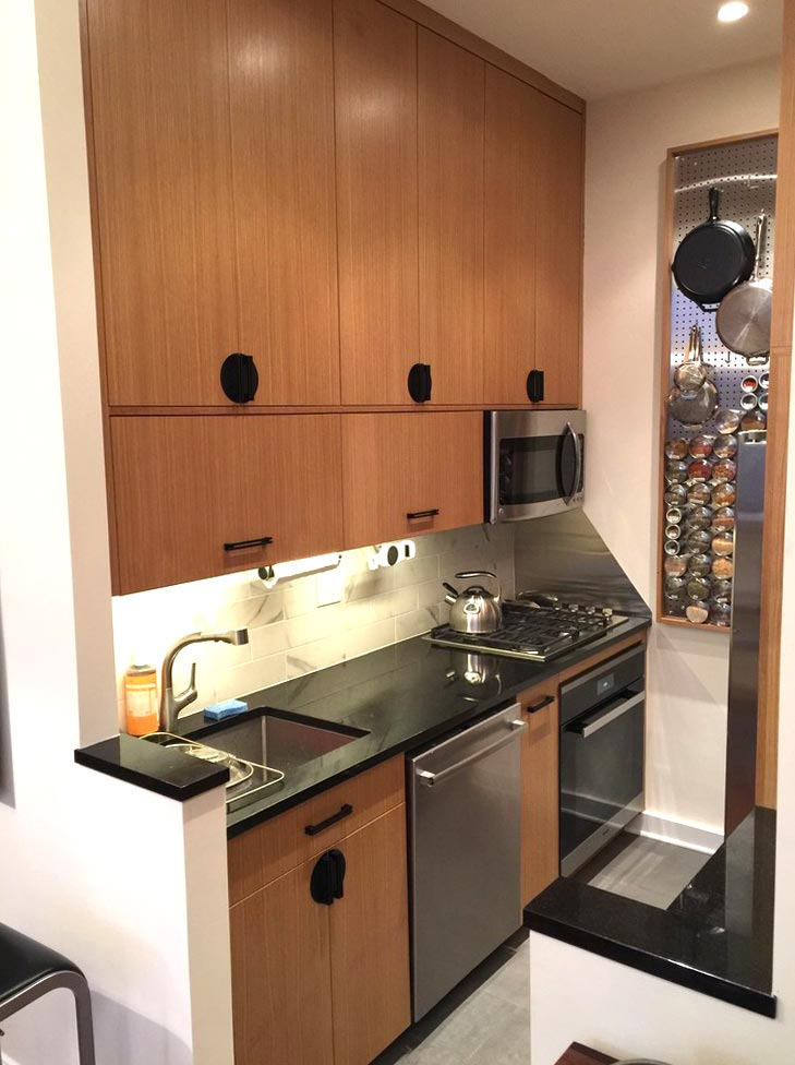 Modern Kitchen Nyc2