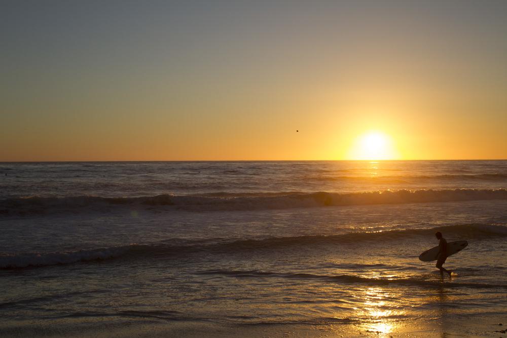 coastal_chkchk02.jpg