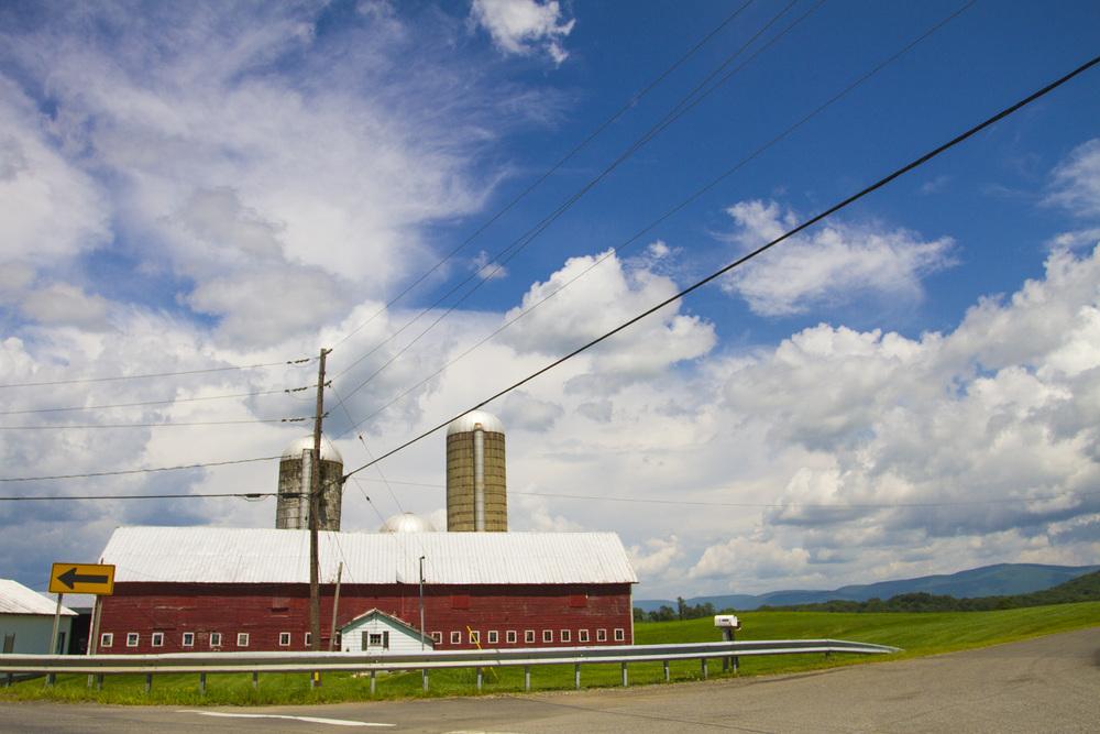farm_chkchk05.jpg
