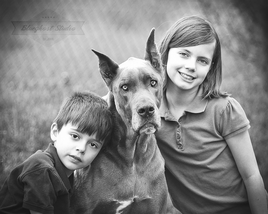 greatdane-kids-photography