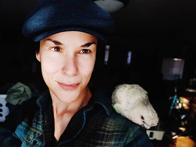 My little chimichanga snoochie booch! There was an awesome patch of evening sunlight and Bela suggested we take some pics! . #poicephalus #parrotsofinstagram