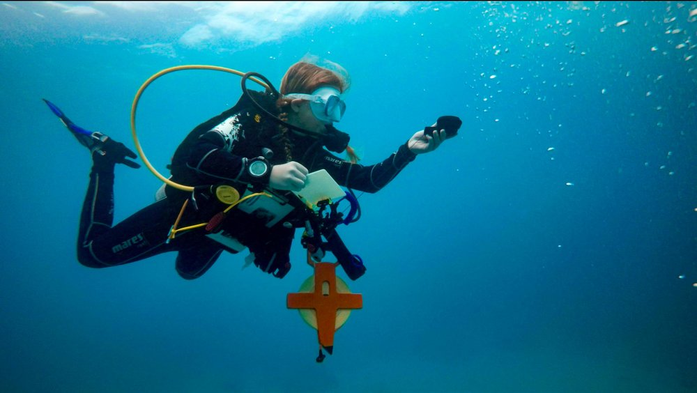 Kara sets the route with her compass. She is looking for a specific coral structure - an important part to their experiment.