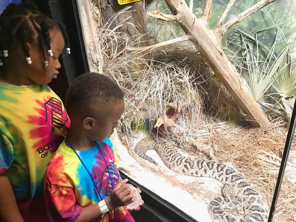 zoo atlanta inside.jpg