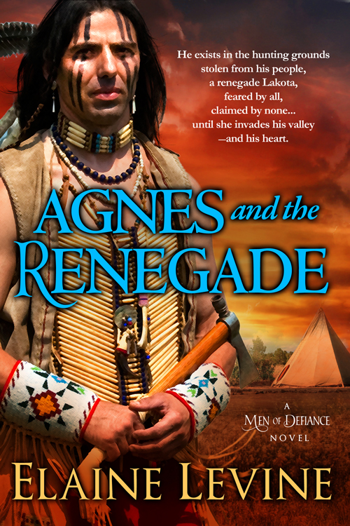 Elaines book chat elaine levine agnes and the renegade men of defiance book 5 fandeluxe Images