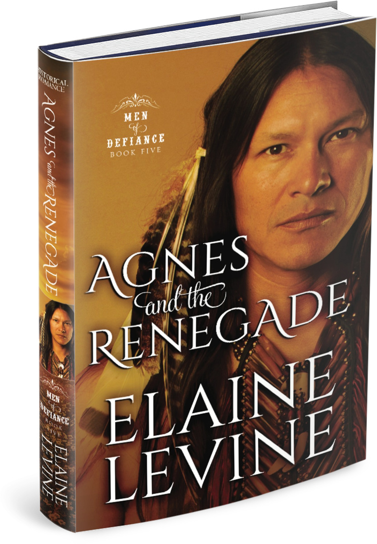 Agnes and the Renegade - Elaine Levine.jpg