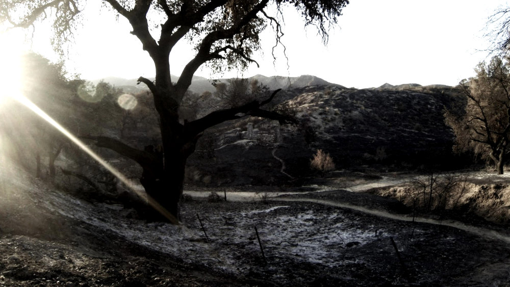 Still from the 'Guiding Light' video shoot - the Santa Clarita Valley, Los Angeles County was left devastated after a Sand Fire in July 2016.