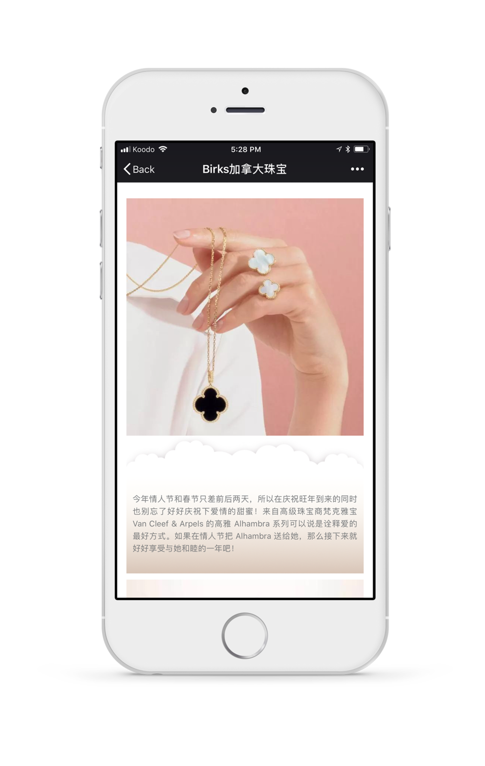 VCA-WeChat-Screenshot.png