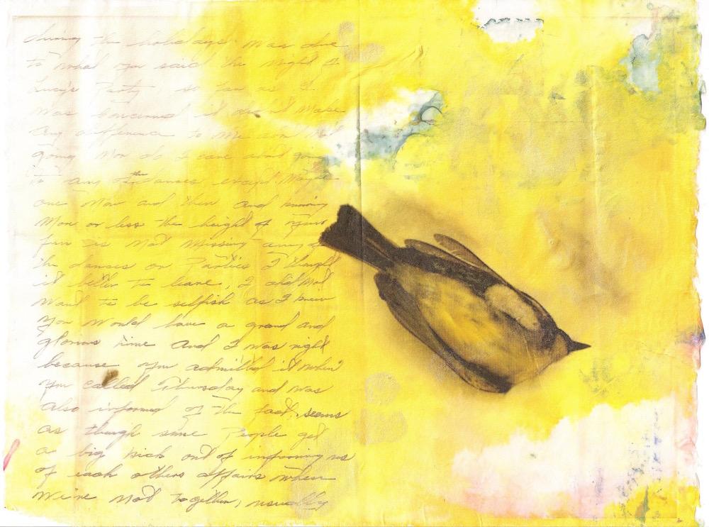 Immortal Bird II.jpg