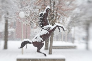 Boise State bronco statue with snow