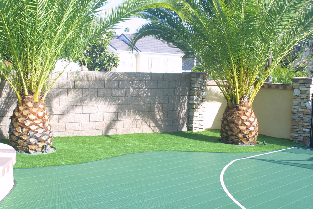 Sport Court and synthetic putting green