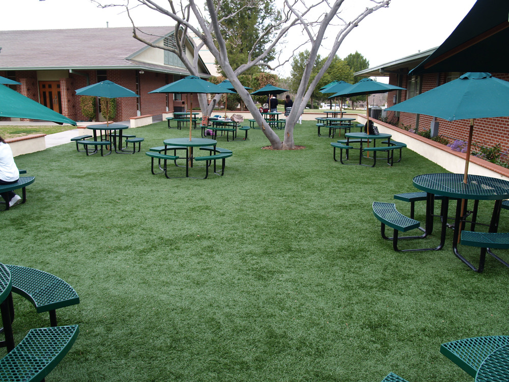 Synthetic grass in school