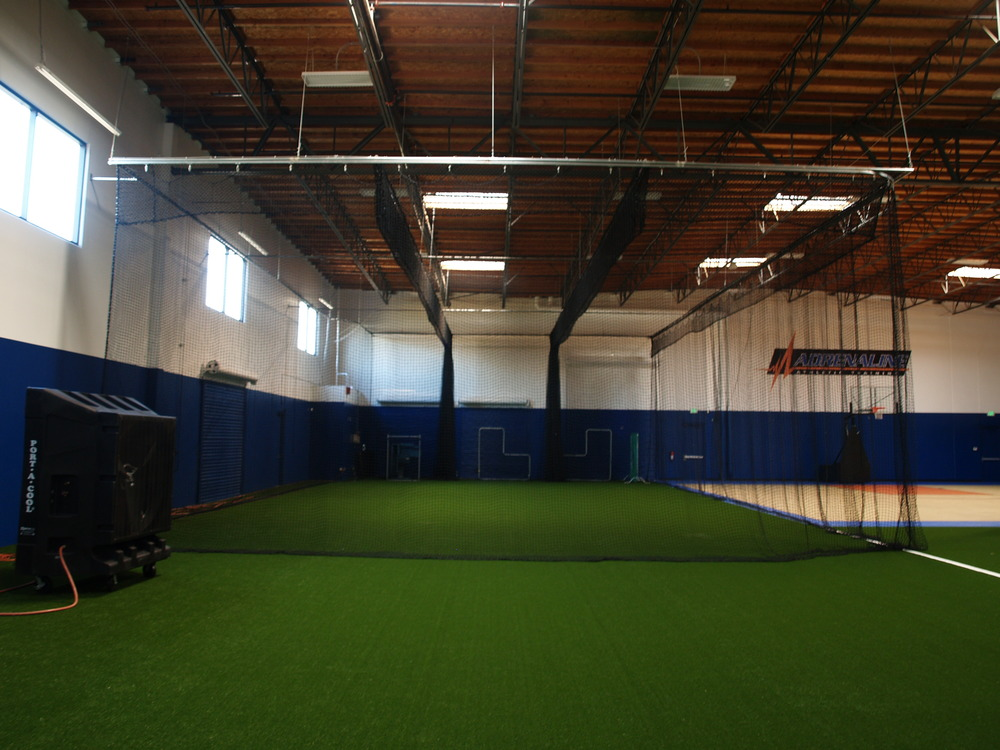 Synthetic artificial grass batting cage