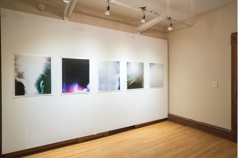 stephanie motta  /  installation view