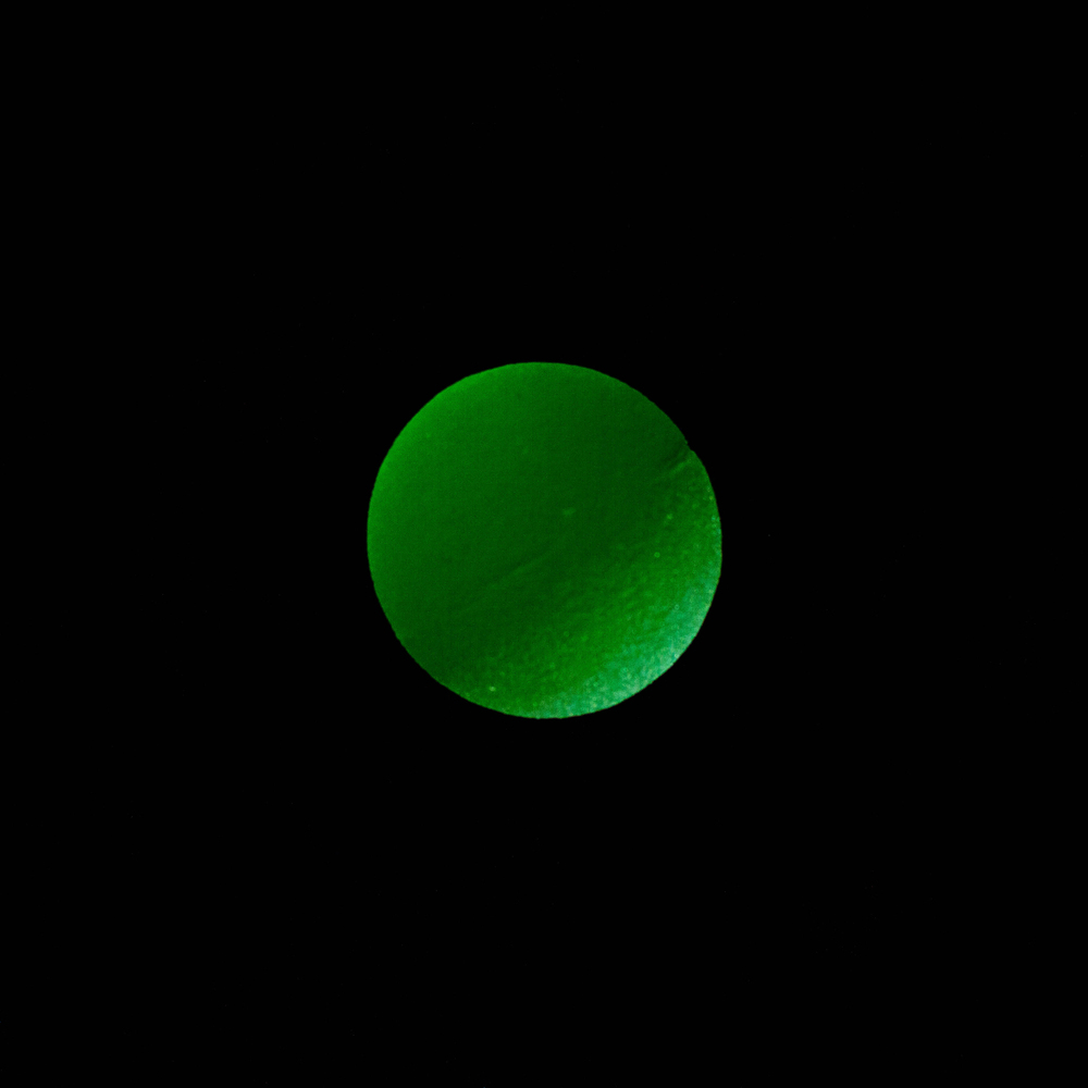 BouncyBall-12.jpg