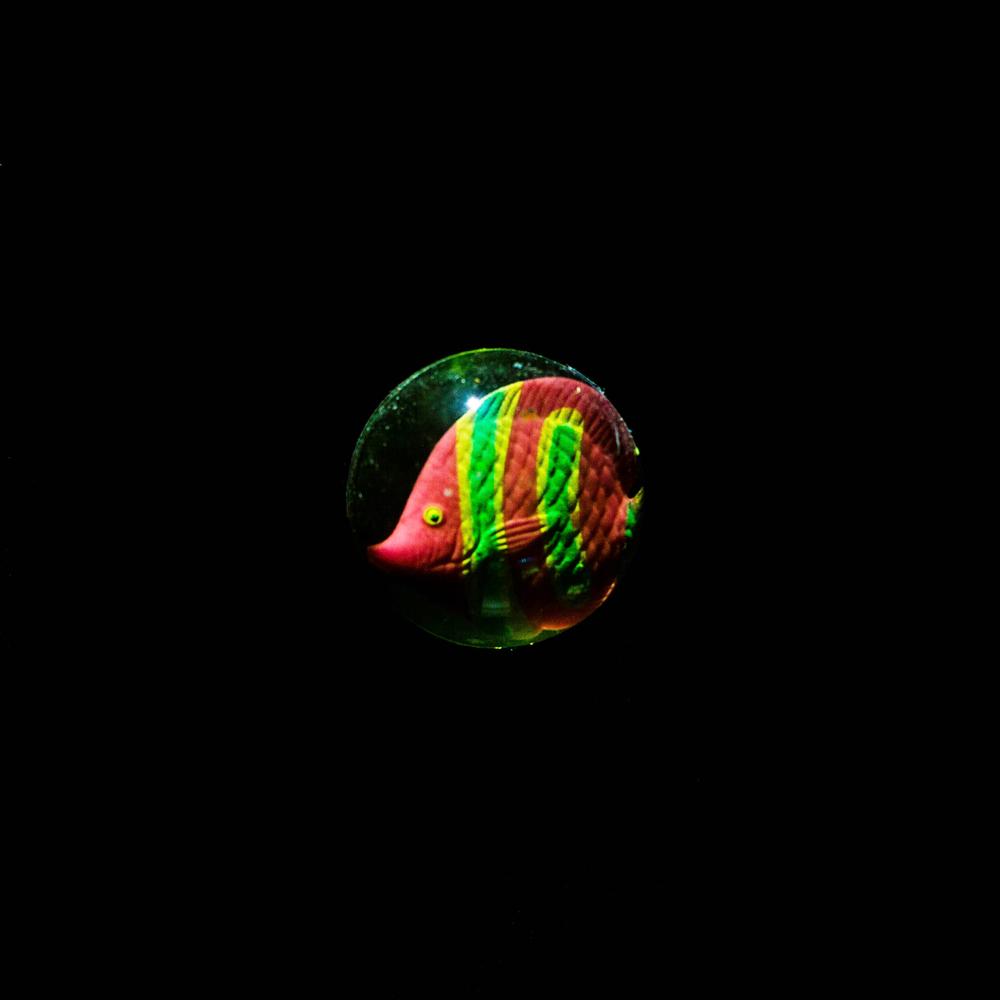 BouncyBall-31.jpg