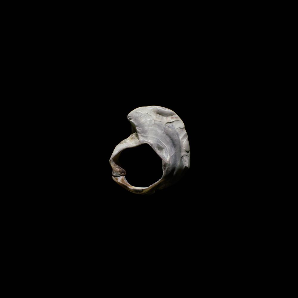 shell-23.jpg