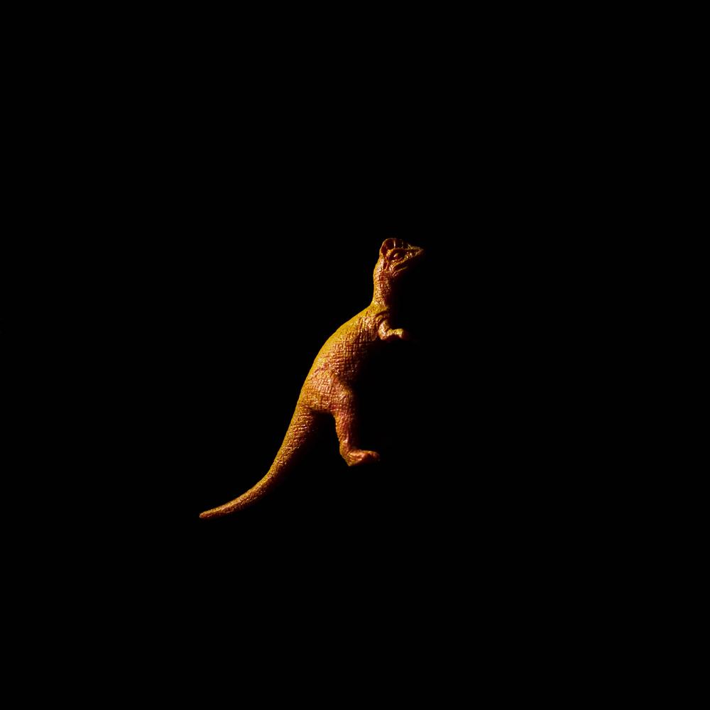 Dinosaur-6.jpg