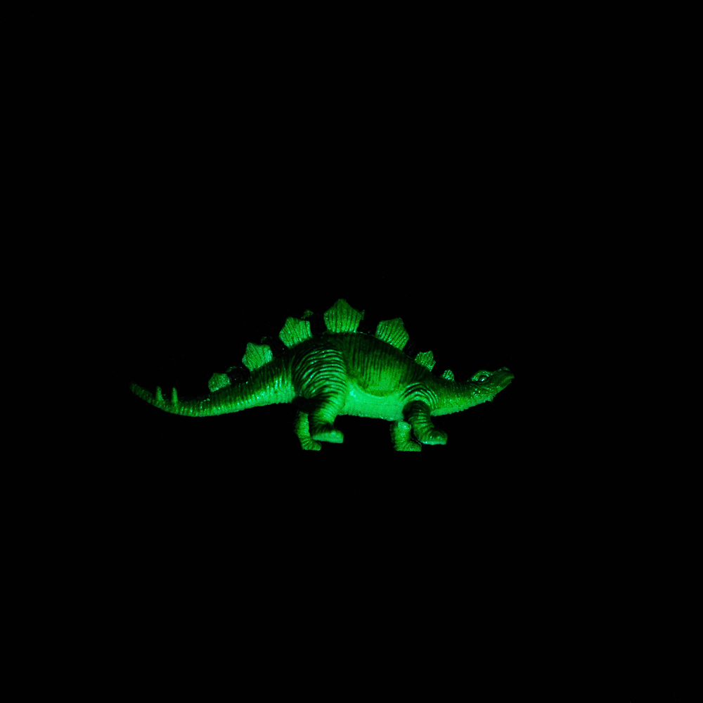Dinosaur-5.jpg